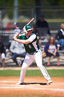 Farmingdale State Rams Justin Norcini (8) at bat during the first game of a doubleheader against the FDU-Florham Devils on March 15, 2017 at Lake Myrtle Park in Auburndale, Florida.  Farmingdale defeated FDU-Florham 6-3.  (Mike Janes/Four Seam Images)