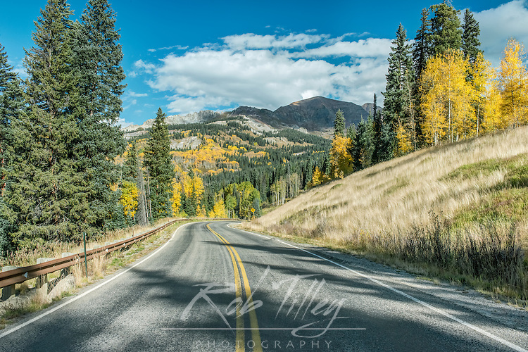 US, CO, Gunnison NF, Autumn Road