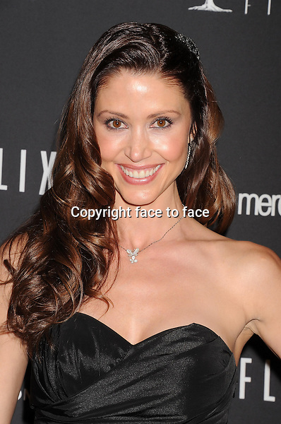 BEVERLY HILLS, CA- JANUARY 12: Actress/model Shannon Elizabeth attends The Weinstein Company &amp; Netflix 2014 Golden Globes After Party held at The Beverly Hilton Hotel on January 12, 2014 in Beverly Hills, California.<br /> Credit: Mayer/face to face<br /> - No Rights for USA, Canada and France -