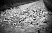 Paris-Roubaix course  , Carrefour de l'Arbre sector
