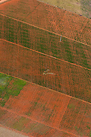 Pouso Alegre _MG, Brasil...Imagem aerea da agricultura em Pouso Alegre. ..The aerial view of agriculture in Pouso Alegre...FOTO: LEO DRUMOND /  NITRO