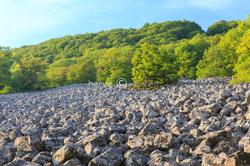 France, Aveyron (12), Lassouts, clapas de Thubiès, ébouli rocheux remarquable de basalte improprement appelé coulée de lave de Roquelaure // France, Aveyron, Lassouts, Thubies clapas, remarkable rocky outcrops of basalt lava