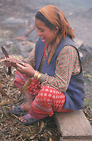 In the mountains of central northern Nepal, near Gumba, at about 8,000 feet, there is a rudimentary paper factory. This employee, squatting outside on a bench, is preparing bark for the paper-making process.