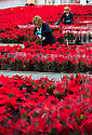 27/11/14<br />