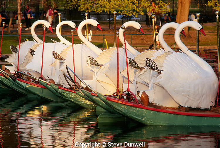 Swan boats, Public Garden, Boston