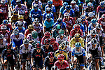 The colours of the peloton during Stage 2 of Tour de France 2020, running 186km from Nice Haut Pays to Nice, France. 30th August 2020.<br /> Picture: ASO/Alex Broadway | Cyclefile<br /> All photos usage must carry mandatory copyright credit (© Cyclefile | ASO/Alex Broadway)