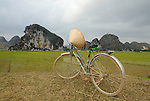 "Asia, Vietnam, Ninh Binh, near Hoa Lu. Bicycle and rice field in the pituresque landscape of the ""Halong Bay on Land""."