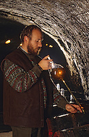Europe/Hongrie/Tokay/Env Sarospatak: Le maître de chais du château Megyer faisant une dégustation au chai