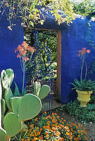 The entrance to the blue garden is accented by the orange blooms of aloes and  some rust colored zinnias ina design by Mike Shoup at the Antique Rose Emporium in San Antonio, Texas