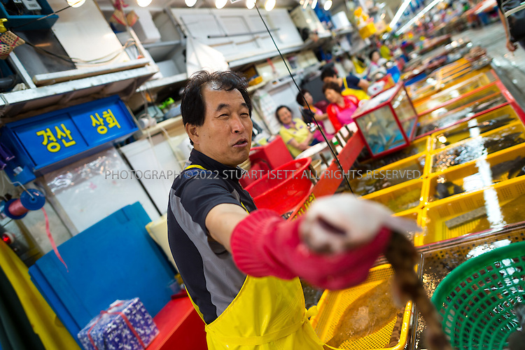 9/2/2013--Busan, South Korea<br /> <br /> Jagalchi Fish Market in Busan (Pusan).<br /> <br /> Photograph by Stuart Isett<br /> &copy;2013 Stuart Isett. All rights reserved.