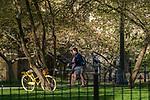 MC 4.18.17 Spring Scenic 06.JPG by Matt Cashore/University of Notre Dame