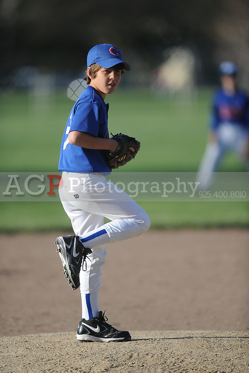 The AA Cubs of Pleasanton National Little League  March 28, 2009.