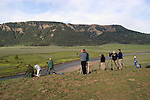 WY: Wyoming; Yellowstone National Park,.Wolf spotting in the Lamar Valley..Photo #: yellow1625.Photo copyright Lee Foster, 510/549-2202, lee@fostertravel.com, www.fostertravel.com..