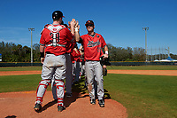 Illinois State Redbirds Sean Beesley (29) high fives teammates, including catcher Danny Jackson (39) after a game against the Northwestern Wildcats on March 6, 2016 at North Charlotte Regional Park in Port Charlotte, Florida.  Illinois State defeated Northwestern 10-4.  (Mike Janes/Four Seam Images)