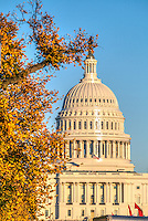 United States Capitol Building Autumn in Washington DC
