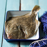 Turbot // The turbot (Scophthalmus maximus) - Stylisme : Valérie LHOMME