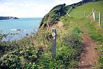 Coastal footpath Trefin, Pembrokeshire Coast national park, Wales