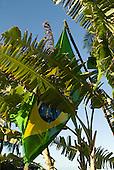 Praia da Tiririca, Itacare, Bahia State, Brazil. A Brazilian flag amongst banana leaves.