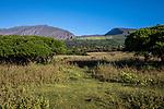 Maui Hills