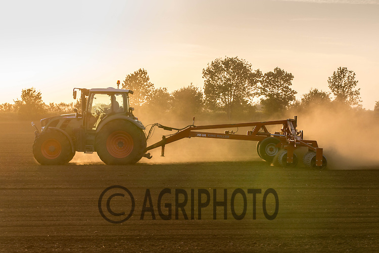Rolling in Winter Barley in the late evening sun<br /> Picture Tim Scrivener 07850 303986