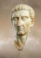 Roman Portrait bust of Roman Emperor Nerva, circa  96 to 98 AD excavated from Tivoli. Marcus Cocceius Nerva Caesar Augustus was Roman Emperor from 96 to 98 AD. On 18 September 96 AD Domitian was assassinated and Nerva became Emperor  at the age of sixty-five after a lifetime of imperial service under Nero and the rulers of the Flavian dynasty. The National Roman Museum, Rome, Italy
