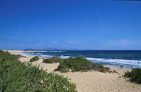 Sand dunes Corralejo, Fuerteventura,Canary Islands.