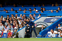 Chelsea manager, Frank Lampard gestures to his team during the Premier League match between Chelsea and Sheff United at Stamford Bridge, London, England on 31 August 2019. Photo by Carlton Myrie / PRiME Media Images.