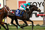 DEL MAR, CA  SEPTEMBER 1: #3 Nolde, ridden by Victor Espinoza, wins the Del Mar Derby (Grade ll) on September 1, 2019 at Del Mar Thoroughbred Club in Del Mar, CA. ( Photo by Casey Phillips/Eclipse Sportswire/CSM)