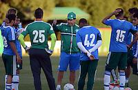 SÃO PAULO,SP, 29 julho 2013 -   durante treino do Palmeiras no CT da Barra funda  na zona oeste de Sao Paulo, onde a equipe a equipe se prepara para enfrentar o Icasa em partida valida pela serie B do campeonato brasileiro. FOTO ALAN MORICI - BRAZIL FOTO PRESS