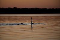 """Aldeia dos índios Kamaiurá a beira do lago Ipavu, no Parque indígena Xingu.<br /> <br /> Igarapés e tributários da bacia do Xingu próximo a aldeia.<br /> <br /> O Kwarup (nome do ritual na língua kamaiurá) é considerado o grande emblema do Alto Xingu e trata-se de uma cerimônia funerária, que envolve mitos de criação da humanidade, a classificação hierárquica nos grupos, a iniciação das jovens e as relações entre as aldeias. Ao longo dos meses que se seguem até o encerramento ocorrem, não necessariamente todos os dias, dois tipos de danças e o toque de longas flautas (uruá, na língua dos Kamaiurá), sempre retribuídos com oferecimento de alimentos pelos """"donos"""" do Kwarup. O foco de orientação dessas atividades rituais é sempre a cerca sobre a sepultura. No pátio da aldeia promotora do rito, cada falecido homenageado é representado por uma seção de tronco de cerca de dois metros. São de uma espécie vegetal que tem distintas denominações conforme as diferentes línguas xinguanas. Os Kamaiurá a chamam de Kwarup, a mesma madeira com que o herói mítico fez as mulheres que enviou para se casarem com o jaguar. Os troncos são colocados um ao lado do outro, de pé, embutidos em buracos de 50 cm de fundo. São pintados e ornamentados com adornos plumários e cintos masculinos. A única distinção entre os troncos que representam homens e os que representam mulheres é que os primeiros são guarnecidos com mechas de algodão não fiado. Também os homens comuns falecidos têm direito a ser representados por troncos, porém menos grossos e com ornamentação mais simples. Os espíritos dos mortos homenageados ficam junto aos troncos na última noite do rito e a isto se reduz a sua participação. Ao anoitecer, acendem-se fogueiras diante de cada tronco do Kwarup. Enquanto os moradores da aldeia anfitriã se revezam, velando os troncos e chorando os falecidos homenageados, os visitantes, cada acampamento por sua vez, entram na aldeia trazendo achas de pinda"""