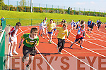 Action from the relay races at the Primary schools athletic championships in An Riocht track Castleisland on Thursday