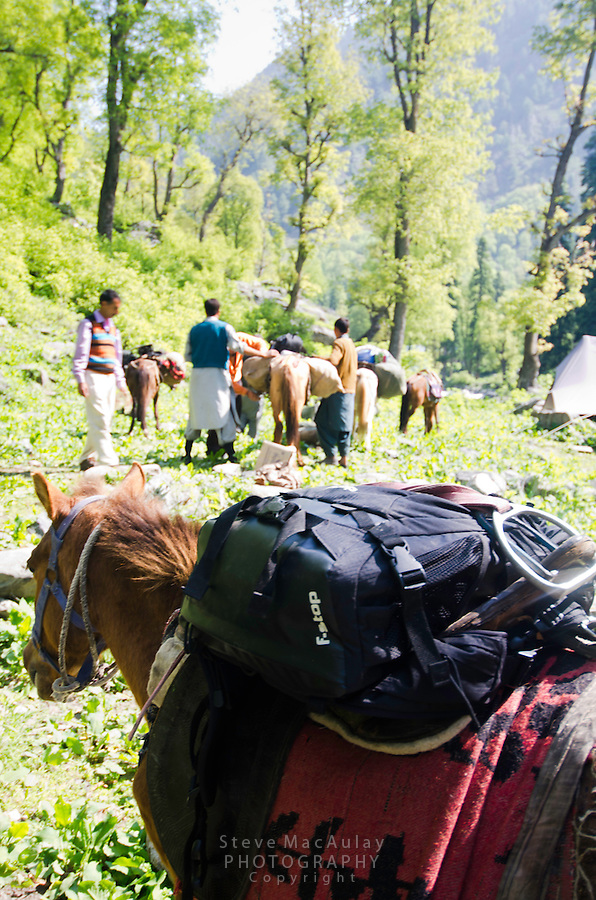 "F-stop ""Loka"" camera backpack lashed to horse saddle as trekking group packs up along the Kanka River, near Naranag, Kashmir, India."