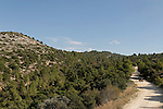 Israel, Jerusalem Mountains. The Jeeps Road