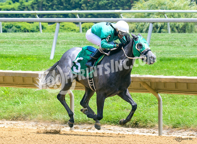 Smoke The Hunt winning at Delaware Park on 7/10/17