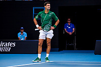 30th January 2020; Melbourne Park, Melbourne, Victoria, Australia; Australian Open Tennis, Day 11; Novak Djokovic of Serbia shows his frustration during the semifinals of the 2020 Australian Open on January 30 2020, at Melbourne Park in Melbourne, Australia. (Photo by Jason Heidrich/Icon Sportswire)