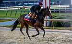 November 1, 2018: Magic Wand (IRE), trained by Aidan P. O'Brien, exercises in preparation for the Breeders' Cup Filly & Mare Turf at Churchill Downs on November 1, 2018 in Louisville, Kentucky. Carolyn Simancik/Eclipse Sportswire/CSM