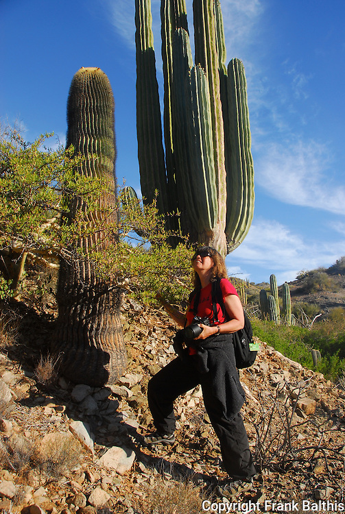 Woman and cacti on Isla Santa Catalina