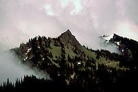 Olympic National Park, Olympic Peninsula, Washington, USA - View of Olympic Mountains from Hurricane Ridge
