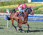 HALLANDALE BEACH, FL - JAN 13: Ultra Brat #7 with Nik Juarez in the irons wins the $150,000 Marshua's River Stakes for trainer H. Graham Motion at Gulfstream Park on January 13, 2018 in Hallandale Beach, Florida. (Photo by Bob Aaron/Eclipse Sportswire/Getty Images)