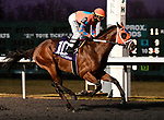 03-09-19 Jeff Ruby Steaks Stakes Day Turfway