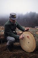 Controllo del legname. Control of the timber....