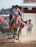 Charles Dillon races in the 54th International Camel Races in Virginia City, Nev., on Friday, Sept. 6, 2013.  <br /> Photo by Cathleen Allison