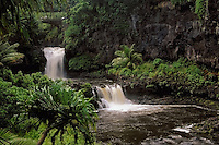 Two waterfalls and the bridge at the seven pools at Ohe'o in HALEAKALA NATIONAL PARK on Maui in Hawaii
