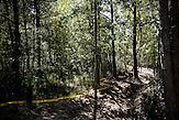 Minenfeld in Ilijas, 15 km nördlich von Sarajevo /   Minefield in Ilijas, 15 km from Sarajevo