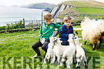 Michael and Tomas O'Dubha with the 5 lambs born on their farm in Coumeenole, Dunquin