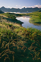 Tundra pond along Park Road<br />