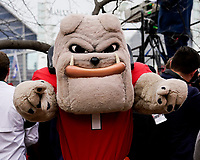 ATLANTA, GA - DECEMBER 7: Hairy Dawg during a game between Georgia Bulldogs and LSU Tigers at Mercedes Benz Stadium on December 7, 2019 in Atlanta, Georgia.