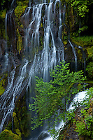 Panther Creek Falls consists of two tiers of segmented waterfalls -Gifford Pinchot NF, Washington
