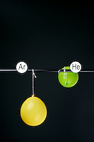 HELIUM AND ARGON FILLED BALLOONS<br /> (Variations Available)<br /> The Two Balloons Are Filled To The Same Volume<br /> After 6 hours the helium filled balloon is smaller than the nitrogen filled balloon. Helium effuses out of the balloon faster than Argon.  Light atoms or molecules effuse through the pores of the balloons faster than heavy atoms or molecules.