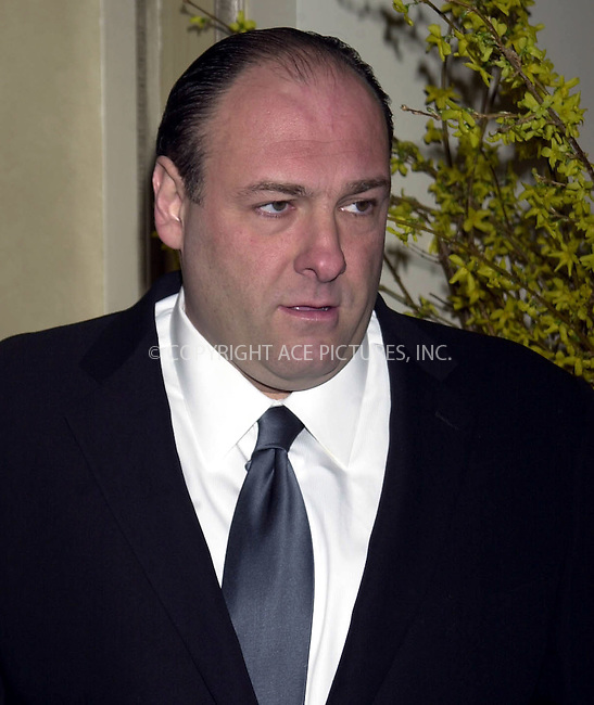 *WORLD RIGHTS*.James Gandolfini arriving at the club.24 5th Avenue in New York. The Sopranos actor was attending .a fundraising event in aid of the African Rainforest Conservancy..In addition to being honored by the society, Gandolfini also named.a newly discovered species of Tanzanian wildflower...New York, USA.   2003   Ref: SA0005.Please Byline AJ Sokalner/Big Pictures USA